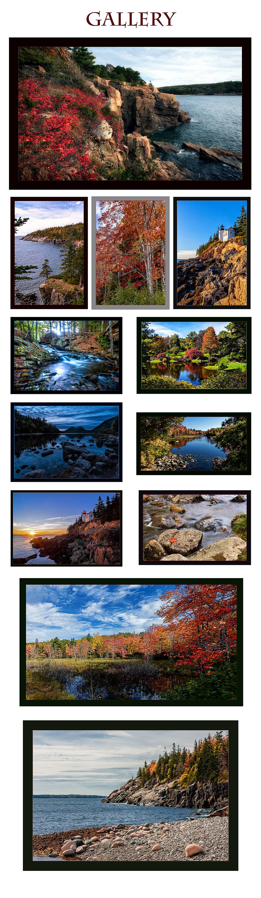 Acadia photography workshop Cruz Photographic Design